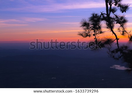 Pine trees and mountains at sunrise, Colored sunrise