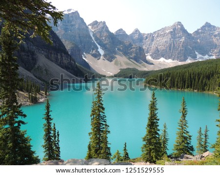 Pine Trees in Front of Pristine Bright Turquoise Water of Canadian Glacial Lake, Glacier and Mountain #1251529555