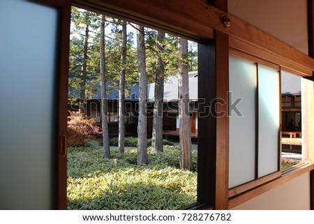 Pine trees in the inner yard of Nikko Tamozawa Imperial Villa Memorial Park, Nikko, Japan, on November 4th, 2016 #728276782