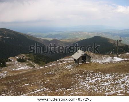 Pine trees of mountain Kopaonik #857295