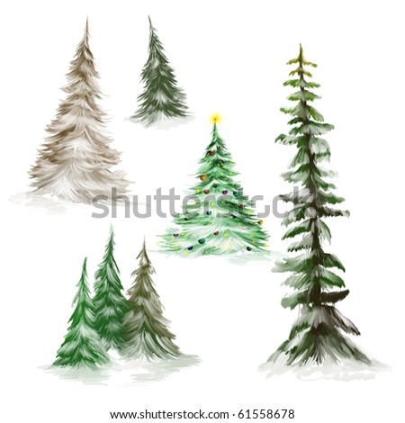 pine trees or christmas trees isolated on white background