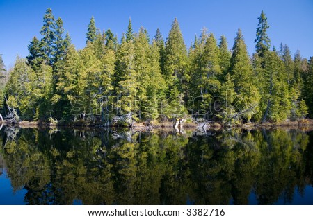 Pine trees reflected on a clear lake in the Mastigouche Nature Reserve