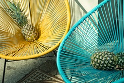 Pineapple. Ananas comosus. Two ananas with blue and yellow background.