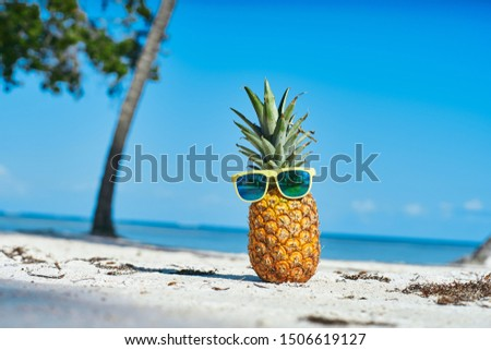 Pineapple beach tropics fruits exotic travel