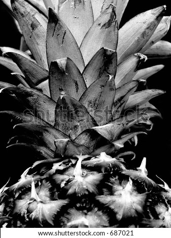 pineapple black and white - stock photo