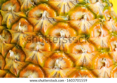Pineapple closeup. A pineapple closeup picture. Ripe yellow exotic fruit. Tropical plant or sweet dessert for vegetarian