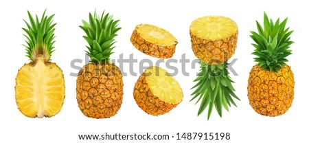 Pineapple collection. Whole and sliced pineapple isolated on white background with clipping path