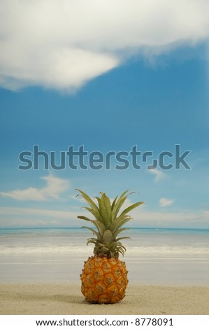 Pineapple on the beach near the water. Withe a  blue and cloudy sky.