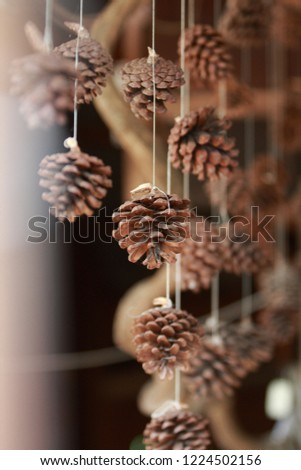 Pinecone for decorate house #1224502156