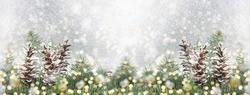 Pinecones and fir tree on sparkling background. Christmas decoration background