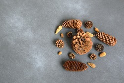 Pinecones on dark grey background. Pinecones grouped natural holiday background copy spase. Natural holiday background with pinecones grouped together.
