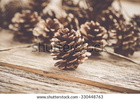 Pinecones on Rustic Wood Background Stock photo ©
