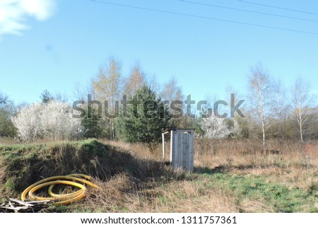 Pines, birches covered with young juicy light green leaves and white bushes in bloom coming back to life in early spring, a wooden damaged privy, some planks of wood and yellow plastic pipes on a lot