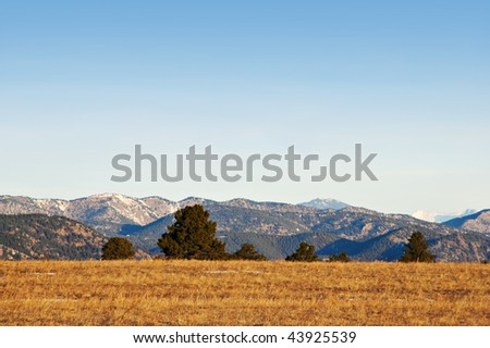 Pines dot the crest of a hill with a view of hazy mountains beyond, in Colorado near Boulder