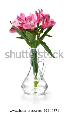 Pink alstroemeria lily flowers in glass vase. Isolated path included.