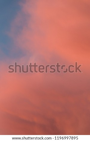 Pink and orange clouds in the sky. Burning skies above the world #1196997895