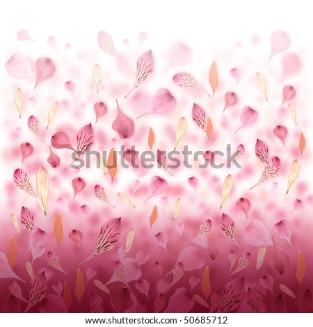 Pink and red flower petals are falling creating a love valentine background. Can also be used for an abstract background for Mother's Day, an anniversary or beauty concept.