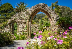 Pink and white flowers fill a corner of this image, framing the two ruined arches of the old Abbey on Tresco, Isles of Scilly. Tropical palm trees and other lush plants surround the ruins.