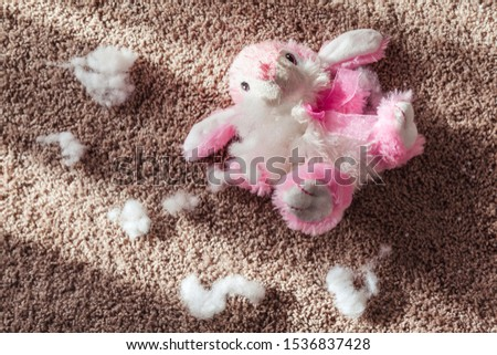 Pink and White Stuffed Rabbit Torn Apart With Stuffing Next To It On The Carpeted Floor