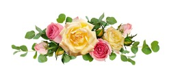 Pink and yellow rose flowers with eucalyptus leaves in arrangement isolated on white background. Flat lay. Top view.