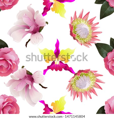 Pink Balsam. Pink Orchid. Pink Magnolia. Pink Protea. Illustration. Seamless background pattern. Floral botanical flower. Wild leaf wildflower isolated. Exotic tropical hawaiian jungle. Fabric.