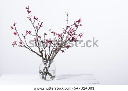 pink blossoming peach flower...