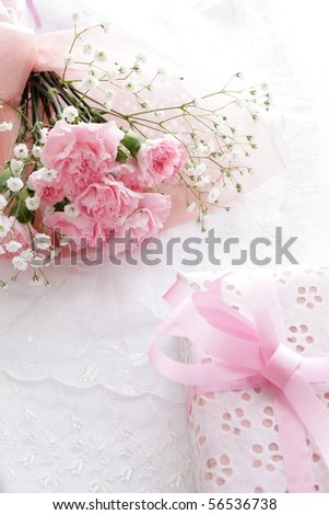 Pink Carnation and a gift isolated on white background