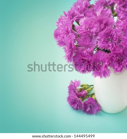 Pink carnation bouquet on blue background