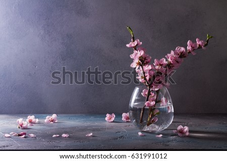 pink cherry blossom twigs in vase on gray background with copy space #631991012