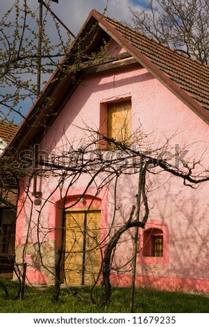 pink colored wine cellar lighten up by sun