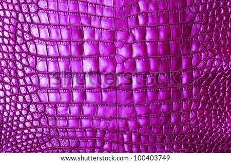 Pink Crocodile belly skin texture background.