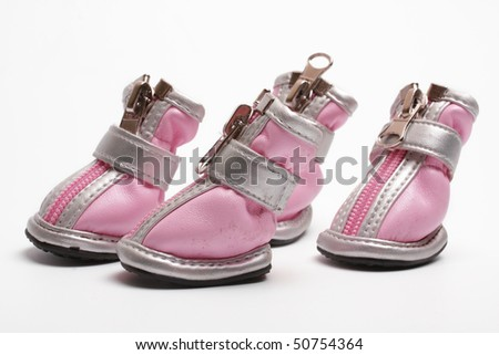 Pink dogs boots on a white