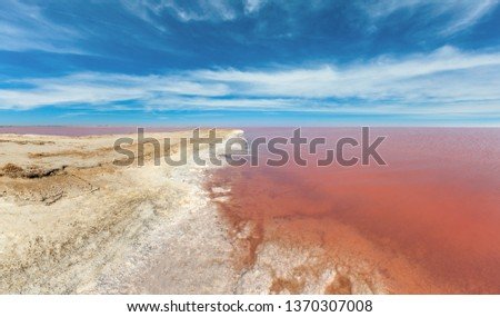 Pink extremely salty Syvash Lake, colored by microalgae with crystalline salt depositions. Also known as Putrid Sea or Rotten Sea. Ukraine, Kherson Region. High-resolution panorama. #1370307008