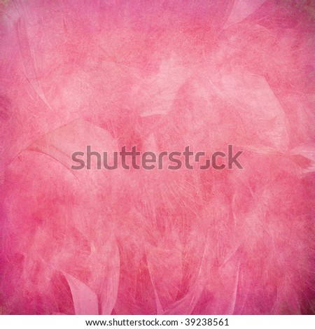 pink feather abstract on paper