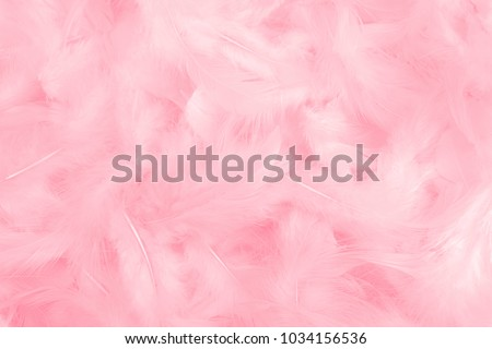 Pink feather texture background #1034156536
