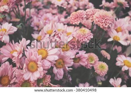 Pink flower #380410498