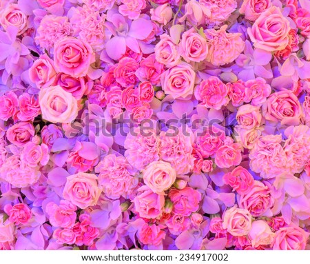 Pink flower background of rose, carnation and orchid