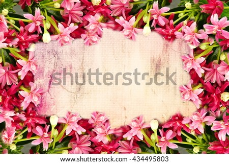 Free Photos Pink Flower Border And Frame In Vintage Color For