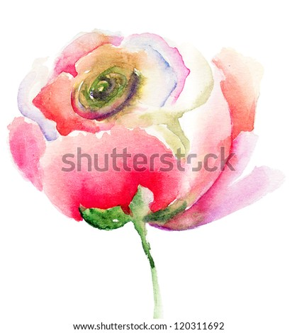 Pink flower bud, watercolor illustration - stock photo
