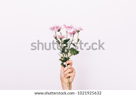 Pink flower in female hand with manicure on white background close-up #1021925632
