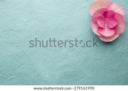 Pink flower, macro shoot, greeting card.