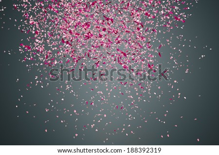 Pink flower petals failing down on dark background