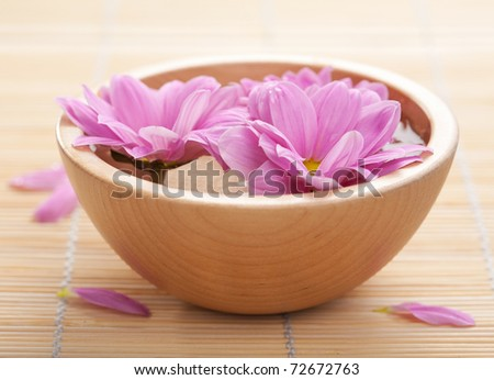 pink flowers in bowl