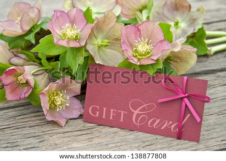 pink flowers with gift card/gift card/Christmas Rose