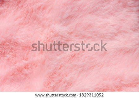 Pink fur texture top view. Coral fluffy fabric coat background. Winter fashion color trends feminine flat lay, female blog backdrop for text signs desidgn. Girly abstract wallpaper, textile surface.