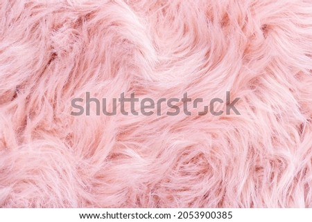 Pink fur texture top view. Pink sheepskin background. Fur pattern. Texture of pink shaggy fur. Wool texture. Sheep fur close up
