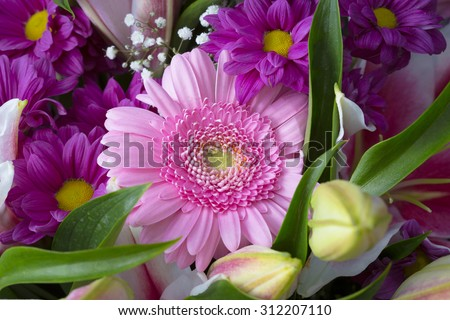 Pink gerbere flower on a bouquet close up