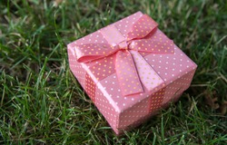 pink gift box with a bow on a green lawn closeup