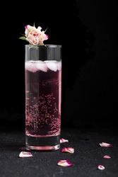 Pink gin and roses cocktail with ice and bubbles in a highball glass on a black background. Rose tonic water with rose petals and rose flower on top.