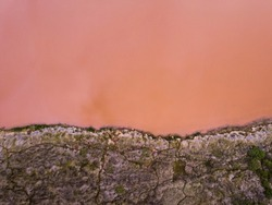 Pink Lake Aerial Photo Western Australia Abstract